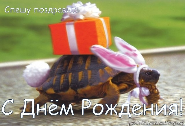 http://creativing.net/wp-content/uploads/2013/05/creativing.net_s_dnem_rozhdeniya_002.jpg